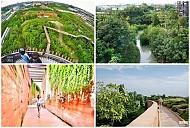 Chiêm ngưỡng khu rừng thần tiên được xây dựng từ bãi rác của Thái Lan.