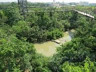 """Khu vườn xanh tươi từng có """"quá khứ"""" bất ngờ giữa lòng Bangkok"""
