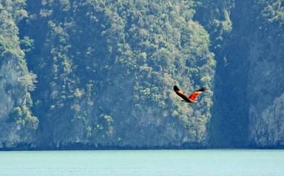 Thiên nhiên hoang sơ trên Phuket