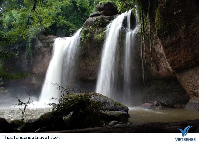 Ngắm động vật hoang dã trong vườn quốc gia Khao Yai