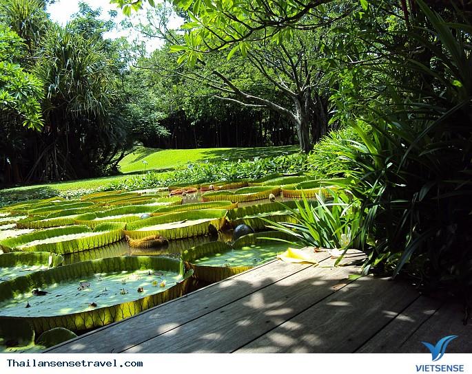 Mát dịu với thiền viện xanh ở Bangkok của Thái Lan - Ảnh 3
