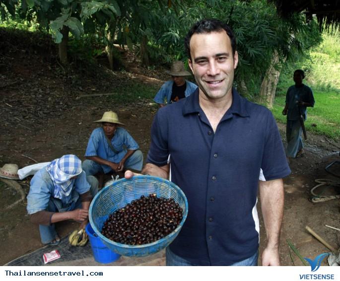 Thưởng thức cà phê đắt nhất tại Thái Lan. - Ảnh 4