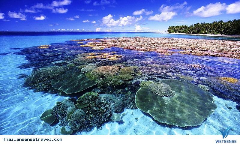 Đến Pattaya – khám phá thiên đường đảo san hô Koh Larn - Ảnh 2