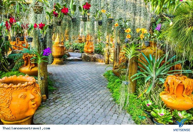 Khu vườn thiên đường Nong Nooch - Ảnh 1