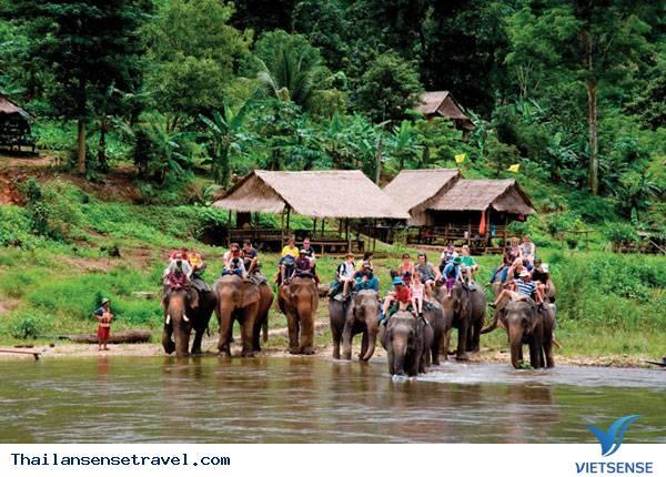Tham quan Công viên Tự nhiên Elephant