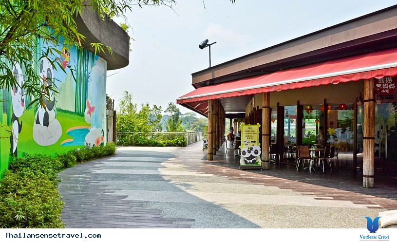 Vui chơi tại vườn thú Khao Kheow ở Pattaya của Thái Lan . - Ảnh 4