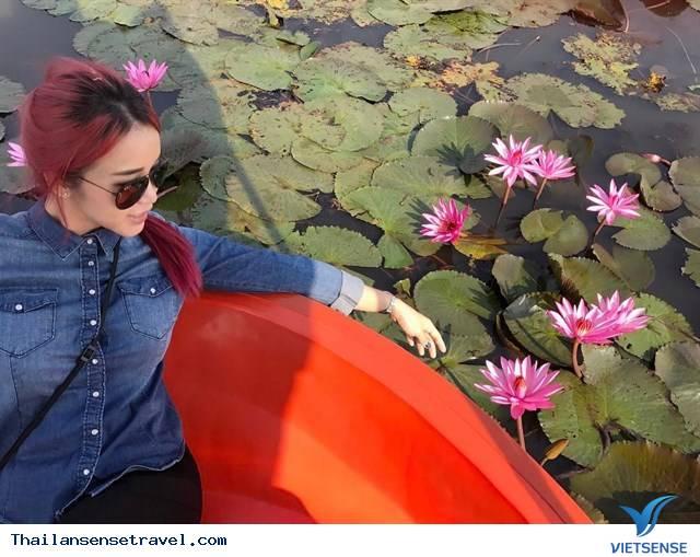 Chiêm ngưỡng  hồ hoa súng Udon Thani ở Thái Lan. - Ảnh 6