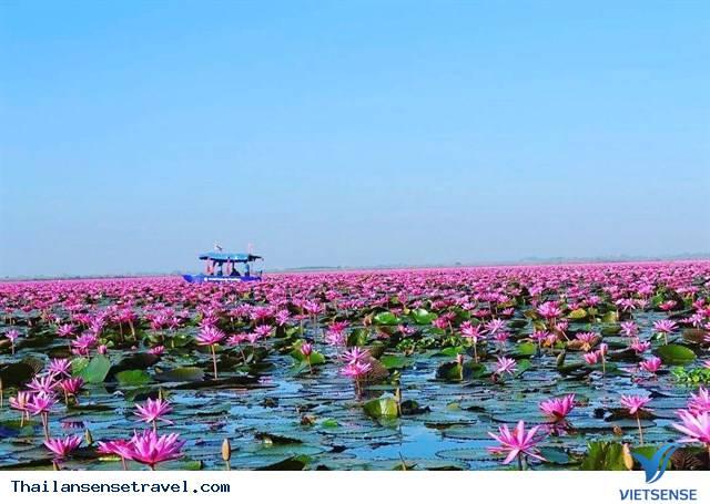 Chiêm ngưỡng  hồ hoa súng Udon Thani ở Thái Lan. - Ảnh 3