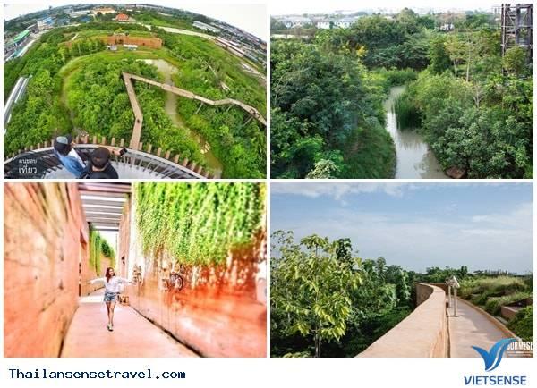 Chiêm ngưỡng khu rừng thần tiên được xây dựng từ bãi rác của Thái Lan. - Ảnh 1