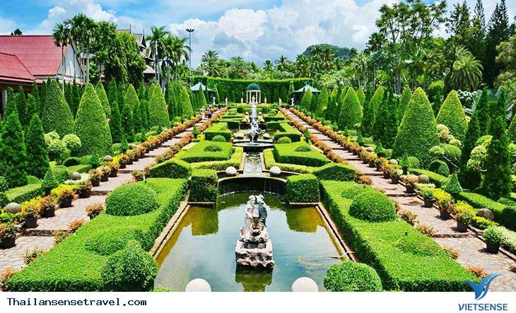 Vườn nhiệt đới Nong Nooch - Ảnh 1