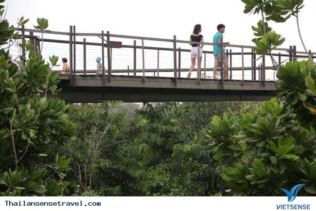 """Khu vườn xanh tươi từng có """"quá khứ"""" bất ngờ giữa lòng Bangkok - Ảnh 2"""