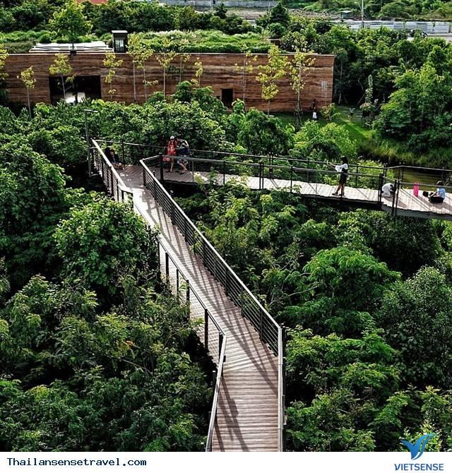 """Khu vườn xanh tươi từng có """"quá khứ"""" bất ngờ giữa lòng Bangkok - Ảnh 1"""