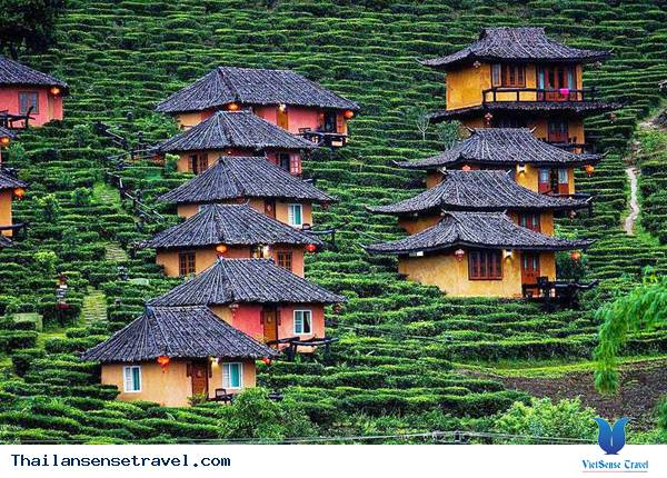 Lạc lối ở vùng đất người Hoa tại Thái Lan - Ảnh 1