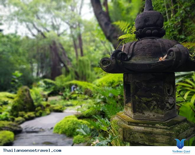 Mát dịu với thiền viện xanh ở Bangkok của Thái Lan - Ảnh 1