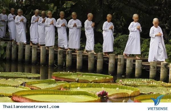 Mát dịu với thiền viện xanh ở Bangkok của Thái Lan - Ảnh 5