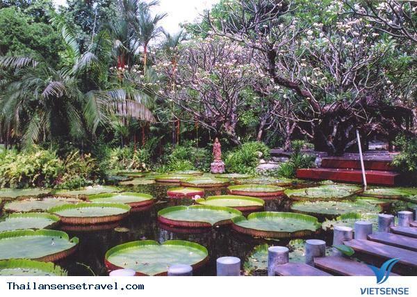 Mát dịu với thiền viện xanh ở Bangkok của Thái Lan - Ảnh 2