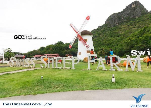 Swiss Sheep Farm - Ảnh 1