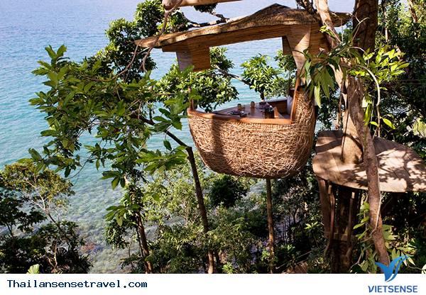 Trải nghiệm cảm giác mới lạ từ nhà hàng tổ chim tại Thái Lan - Ảnh 2