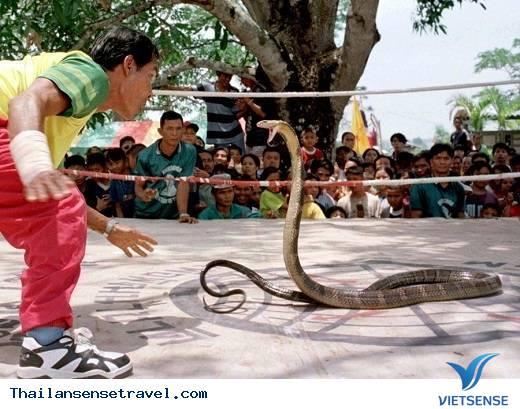 King Cobra Village, tỉnh Khon Kaen